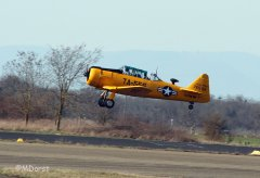 AT-6_D-FITE_19-03-2010_16.jpg
