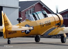 AT-6_D-FITE_19-03-2010_4.jpg