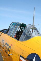 AT-6_D-FITE_19-03-2010_44.jpg