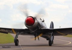 Hawker_Sea_Fury_Akary_10d.jpg