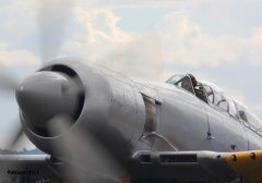 Hawker_Sea_Fury_GN_910_7b.jpg