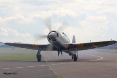 Hawker_Sea_Fury_GN_910_7c.jpg