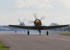 Hawker_Sea_Fury_VL120_6.jpg